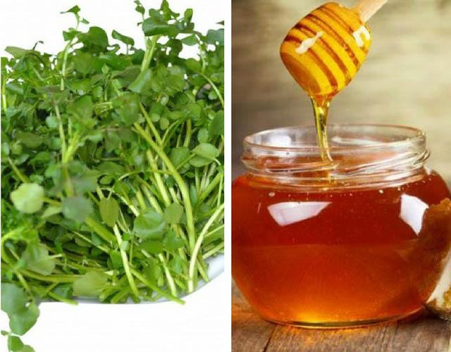 kết hợp cải xoong và mật ong trị nám tàn nhang