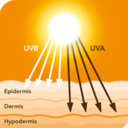 Tia UV - Nguyên nhân lớn nhất gây ra nám và tàn nhang