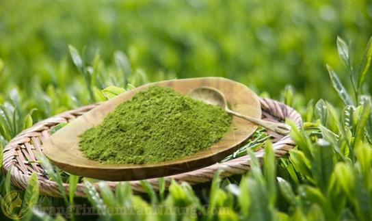 Tác dụng trị nám da bằng trà xanh
